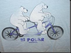Bi Polar
