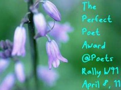 perfect-poet-week-41